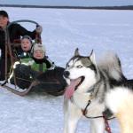 О чём молчит зимняя тайга: Путешествие на собачьих упряжках
