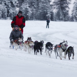Месяц Карелии: Зимний отдых в Калевале